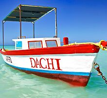 Colorful Fishing Boat of the Caribbean  by David Letts
