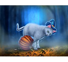 Candy Thief Photographic Print