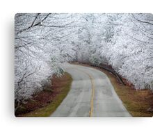 The Road To Narnia Canvas Print