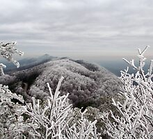Rime Ice in the Smoky Mountains by KellieSharpe