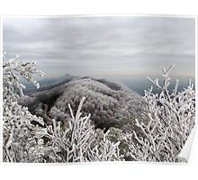 Rime Ice in the Smoky Mountains Poster