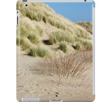 Vertical Dunes iPad Case/Skin