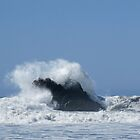 Whale Rock by Steve Hunter