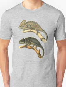 Chameleon Scientific Illustration T-Shirt