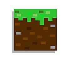 Little Block - Minecraft Sticker Photographic Print
