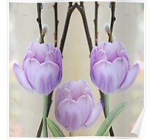 Pastel Spring Tulips Poster