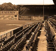 The Old Ballpark 2 by Frank Romeo