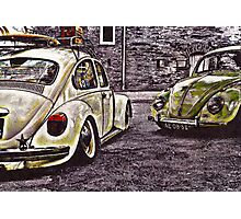 Double Trouble Photographic Print