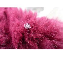 Snowflake on fur Photographic Print