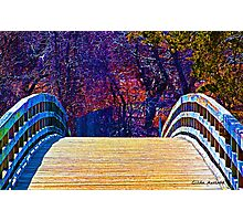 First Day of Spring on a Bridge Photographic Print