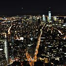 Looking Downtown from 86 Floors by Jill Vadala