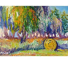 Country Painting Oil on Canvas, Ekaterina Chernova Photographic Print