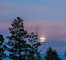 Moonrise by ZachKracht