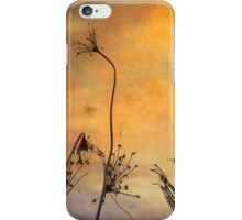 Skeletal Queen Anne's Lace iPhone Case/Skin
