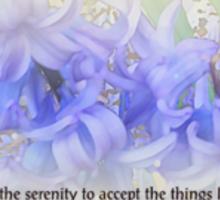 Serenity Prayer Hyacinths Sticker
