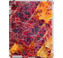 Garnet iPad Case/Skin