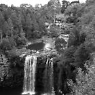 Dangar Falls by SharronS