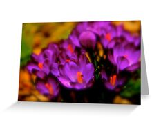 Art Of the Crocus 1 Greeting Card