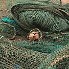 A Nest of Nets by kalaryder