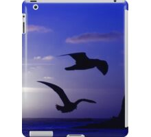 the double bird blues iPad Case/Skin