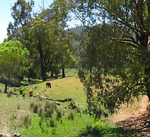 Australian Country Scene 4 by Heather Jephcott