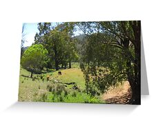 Australian Country Scene 4 Greeting Card