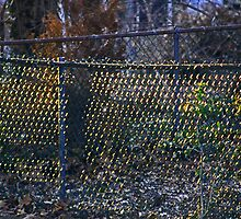 Sunrise on a Chain Link Fence by Gilda Axelrod