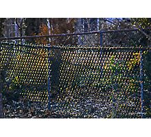 Sunrise on a Chain Link Fence Photographic Print