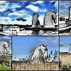 Kelpie Collection... by Francis  McCafferty
