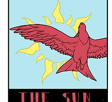 The Skvader Sun by Casey Edwards
