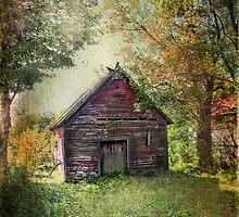 """Red Treasures"" by Cheryl Tarrant"