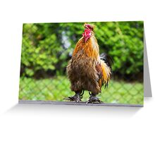 Rooster Crowing Greeting Card