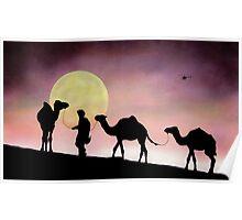 Desert Transport Poster