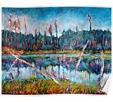 North of Quebec Taiga Landscape Poster