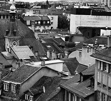 Lausanne Rooftops. Canton Vaud, Switzerland by Igor Pozdnyakov