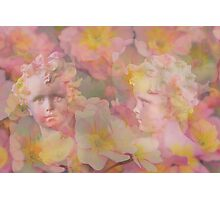 The Story of Camouflage Spring Fairies Photographic Print