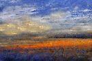 Sunset Field by RC deWinter
