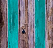 Weathered Wood Door of the Caribbean II by David Letts