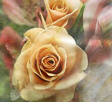 Tangerine Roses by vigor
