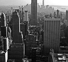 Viewpoint Manhattan by Matthias Keysermann