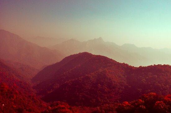 Crimson landscapes by lalalu