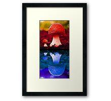 Colour fungi Framed Print