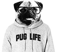 Live the Pug Life  by PugCommunity