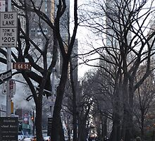 New York by minchb