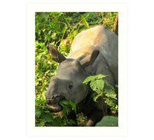 Baby Rhino Feast Art Print