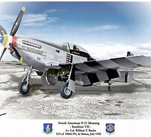 "North American P-51 ""Sunshine VII"" by A. Hermann"