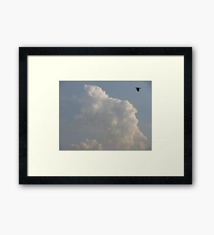 black sky blue bird Framed Print