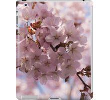 Pink Spring - Gently Pink Cherry Blossoms iPad Case/Skin