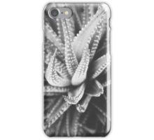 Cactus Species iPhone Case/Skin
