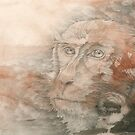 Chinese Zodiac - The  Monkey by Kirsten Glenwright